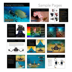 Optical Ocean Sales - Strobe Handbook