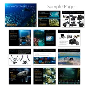 Optical Ocean Sales - Video Handbook
